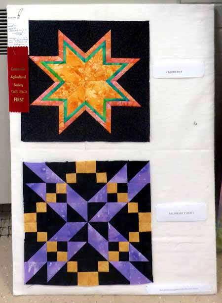 brynhilds-prize-winning-blocks-from-the-centreville-fair_m